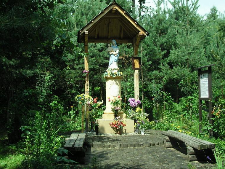 Kapliczka_Maryjka_w_lesie_na_Branicy.jpg (238.95 Kb)